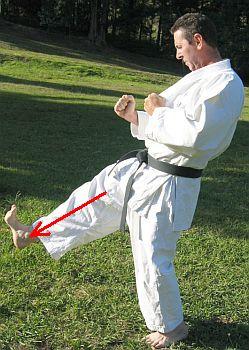 Karate: las patadas Maegerifumikomi